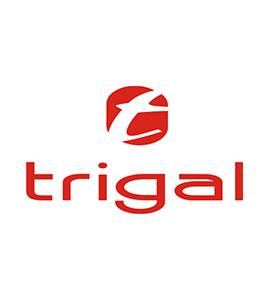 trigal-san-juan